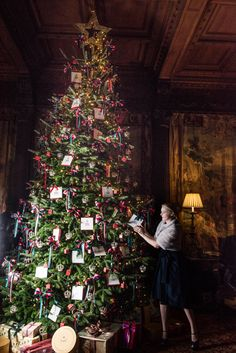 Deck the tree - Cliveden House Tree Inspo for our Chatsworth Lounge at The Royal Clifton Hotel and Spa Gold Christmas Tree, Beautiful Christmas Trees, Christmas Mood, Elegant Christmas, Plaid Christmas, All Things Christmas, Xmas Trees, English Christmas, Indoor Christmas Decorations