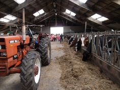 fotoshoot op de boerderij bij Twentse Boerin in Markelo