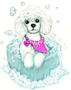 My Sophie as a cartoon poodle.