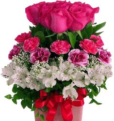 Good morning all friends Beautiful Flowers Images, Beautiful Gif, Flower Images, Beautiful Roses, Good Morning Flowers, Good Morning All, Cheap Flower Delivery, Diy Rose, Kristen Stewart Pictures