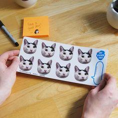 """Customizable face sticker sheet (Doody's face) 1.75"""" Sticker Sheet"""