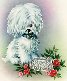 Old Design Shop ~ free digital image: cute white puppy