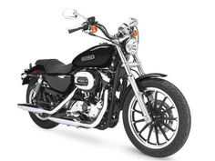 Used 2006 Harley-Davidson XL1200L - Sportster 1200 Low Motorcycles For Sale in Virginia,VA. 2006 Harley-Davidson XL1200L - Sportster 1200 Low, Sportster® 1200 Low has Detachable Backrest and Luggage Rack BIG GUT. LOW BUTT. The Sportster® 1200 Low boasts the strongest XL Evolution® engine on a low, nimble street bike with an equally low price. Look what just flew in under the radar. The all-new Sportster® 1200 Low motorcycle. A long, low, custom street bike straight from the Harley-Davidson…