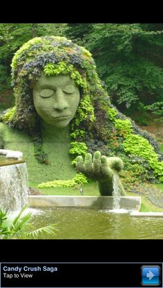 Amazing topiary art of lady in the #garden... Inspiration for future #livingwall design
