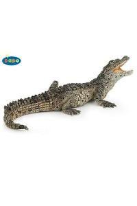 Baby Crocodile $8.95
