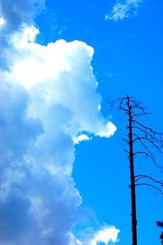 Satu Ylävaara (@SatuYlavaara) | Twitter Helsinki, Clouds, Photography, Travel, Outdoor, Twitter, Blog, Outdoors, Photograph