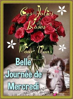 ᐅ 167 Mercredi images, photos et illustrations pour facebook - BonnesImages Buddha Garden, Morning Greetings Quotes, Le Jolie, Good Morning Wishes, Happy Mothers Day, Wednesday, Christmas Wreaths, Flora, Messages