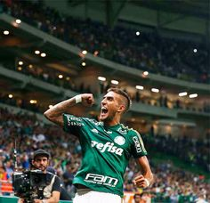 dfe92dea797e6 Esportiva Palmeiras - Google Search