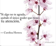 Eres dueño de tu atención.