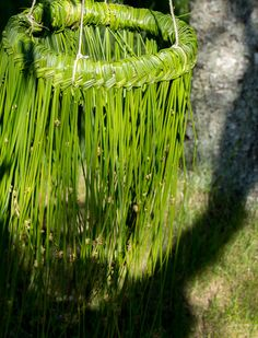 Garden Crafts, Garden Art, Environmental Sculpture, Bio Art, Willow Weaving, Forest Art, Garden Structures, Deco Table, Nature Crafts