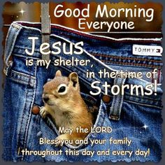 Good Morning Everyone, Happy Tuesday. I pray that you have a safe and blessed day!!