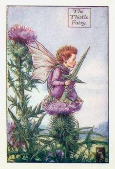 Summer Fairies: The Thistle Fairy by Cicely Mary Barker