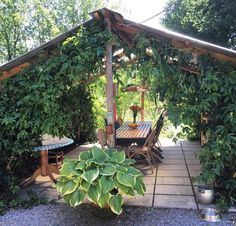 Zoiets voor de tuin lief