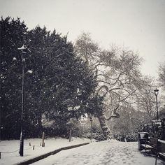 Delayed snow shot