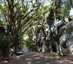 Gonçalo de Carvalho Street, Porto Alegre, Brazil
