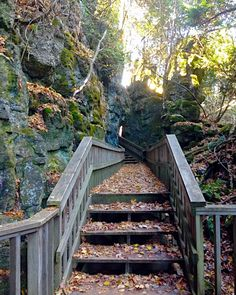 31 Super Easy Hikes In Ontario To Take Your Friend Who Hates Hiking - Narcity Ontario Travel, Super Easy, Trail, Hate, Hiking, Walks, Trekking, Hill Walking