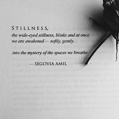 Segovia Amil • Stillness ..*