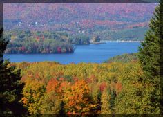 Moores Dam in the fall; Northern NH #mooresdam