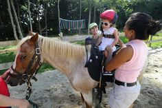 Horses help provide therapy to those in need