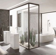 Private indoor shower with vertical garden view bathrooms pinterest gardens vertical Cleansing concepts garden city