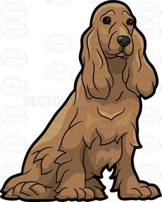 A pretty cocker spaniel : A dog with shaggy long brown fur black nose and eyes long ears sitting on the floor looking comfortable and pretty The post A pretty cocker spaniel appeared first on VectorToons.com.