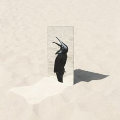 Stream the new LP 'The Imperfect Sea' by the Penguin Cafe, an orchestra that lasted from 1972 until it's founder's death in 1997 and was re-opened by his son in 1999.