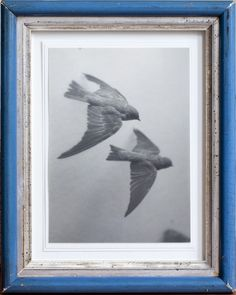 10,000 Nautical Miles - silver gelatin print in an antique frame