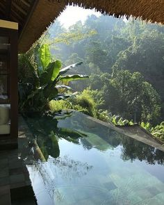 Surrounded by lush Balinese jungle and tropical beauty. Visit the link to book ❤️ Aloita Resort, Foto Website, Beautiful World, Beautiful Places, Beautiful Pictures, Places To Travel, Places To Visit, Jolie Photo, Travel Aesthetic
