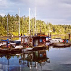 Thetis Island BC is one of the southern gulf islands.