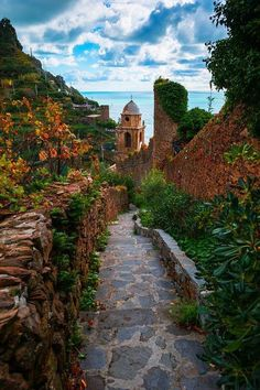 lovely stone path in Cinque Terre, Italy
