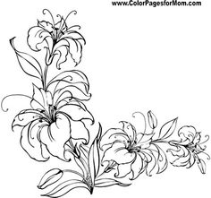 Flower Coloring page 64
