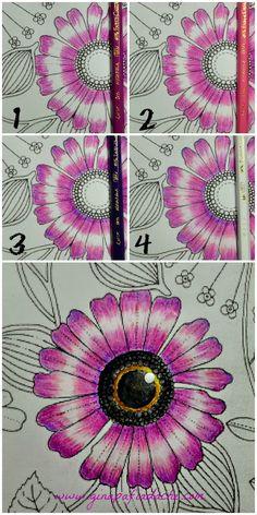 como pintar flores com lapis de cor - Pesquisa Google