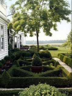 Knot garden with container border