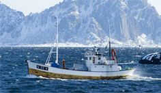Fishing boat in Lofoten, Nordland, in Norway - Photo: Terje Rakke/Nordic Life/Nordland Reiseliv Lofoten, Holidays In Norway, Longyearbyen, Richest In The World, Arctic Circle, Midnight Sun, Go Hiking, Nature Images, Archipelago