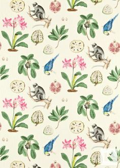 Capuchins fabric by Sanderson part of Voyage of Discovery - Prints and Weaves collection | Kingdom Interiors