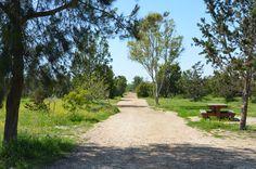 Cyprus, Nature, Tekke Park, Larnaca