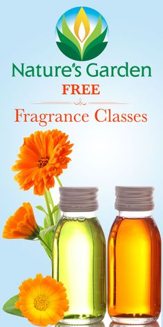 Free Fragrance Classes by Natures Garden.  What are fragrances made of?  How do essential oils and fragrance oils differ?  #fragranceclasses
