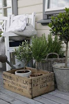 elementos para decorar tu terraza