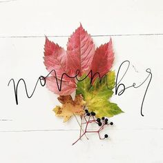 Notes from November Home Trends home textile trends 2018 Fall Backgrounds Iphone, November Images, New Month Wishes, Hello November, November Poem, November Baby, Happy November, Fb Cover Photos, Love Always