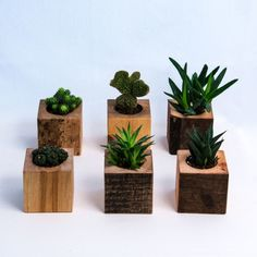 Frizzifrizzi » Carapace: la storia di tre fratelli, tra legno, ferro e design italiano