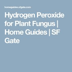 Hydrogen Peroxide for Plant Fungus | Home Guides | SF Gate
