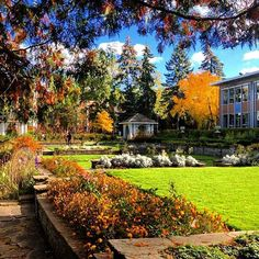 Fall at the Rose Garden ! Beautiful photo from community member ! York University, Ontario, Toronto, School Photography, Community, Adventure, Mansions, Photo And Video, House Styles