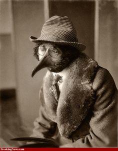Bird head man.