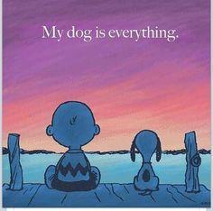 Mein Hund ist Alles für mich! <3