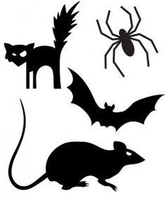 Templates - cat, bat, rat, spider