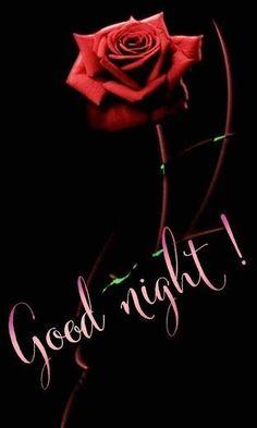 Good Night Photos Hd, Beautiful Good Night Images, Beautiful Flowers Images, Sweet Night, Good Night Sweet Dreams, Good Morning Good Night, Day For Night, Morning Msg, Good Night Greetings