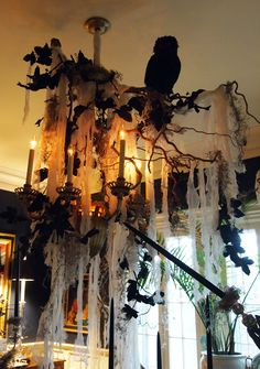 Spooky chandelier for Halloween party: Used leafless branches, shredded cheese cloth, vines, and a spooky black owl to perch on top.