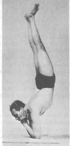 Sayanasana Yoga Pose BKS Iyengar