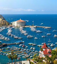 Good morning family, a beautiful Tuesday heading our way :-) I love you, have a great day! Good morning #CatalinaIsland #California https://m.youtube.com/watch?v=hJYjqr2d_-c #SteveOliver