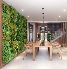 Living Wall Anyone? The Best Indoor Gardens - mom.me
